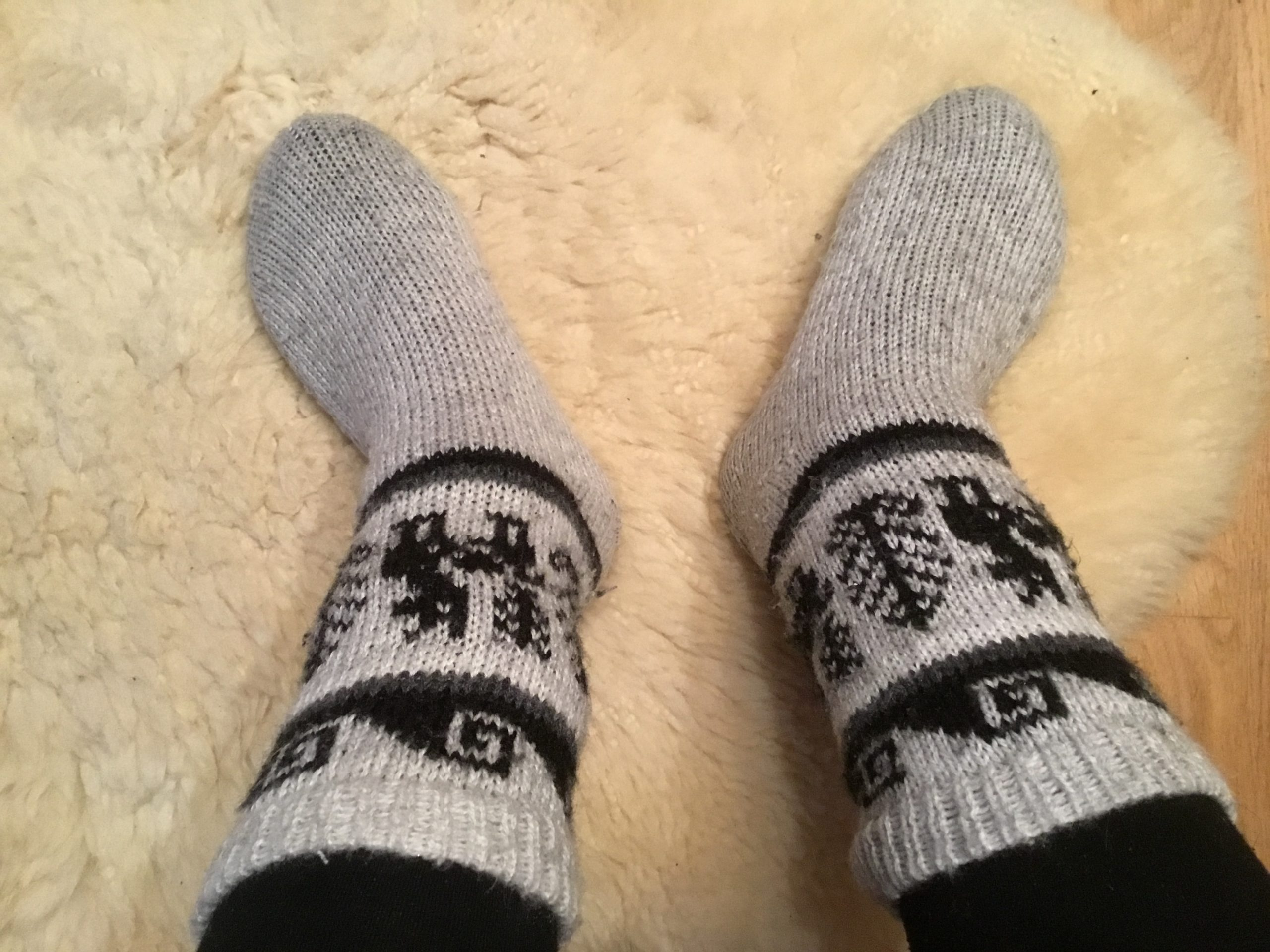 Richtig! Wollige Kuschelsocken halten Deine Füße warm. 🧦