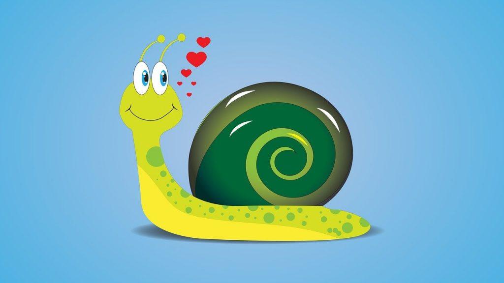 snail, draw, cartoon